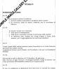 Regolamento_Sezionale_200811